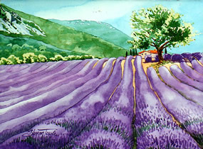 Lavender Fields & Tree Provence